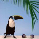 Toucan aux figues|1986, acrylique sur toile, 60x60cm, collection particulière