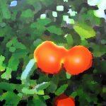 Oranger, acrylique sur toile, 65x81cm, 2015